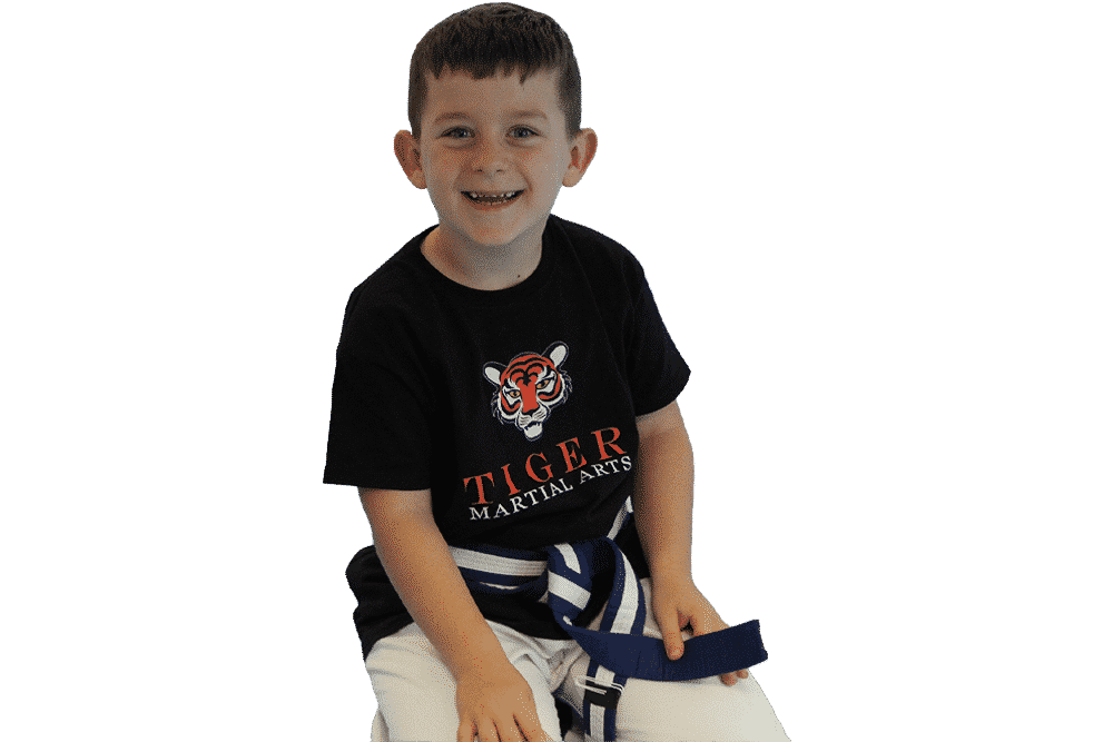 OurTiger Cubs Programmeis a foundational programme for4 to 5yrs, leading to ourJunior Martial Arts Programme.