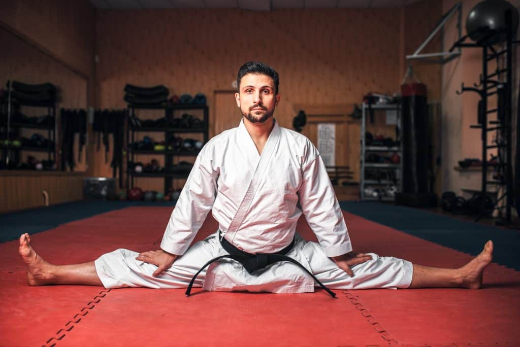 Many of our students at Tiger Martial Arts in Oxford yearn for a healthy lifestyle